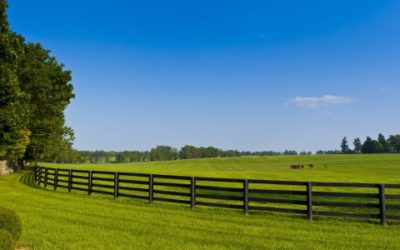 FENCE COMPANY LISTS 3 PRACTICAL REASONS TO REBUILD OR REDESIGN FENCES