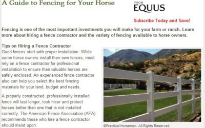 DENVER FENCE COMPANIES: THE RIGHT FENCE TYPE FOR YOUR EQUINE FRIENDS