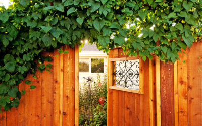 See How Your Homes Fence Can Make Gardening A Dream Come True