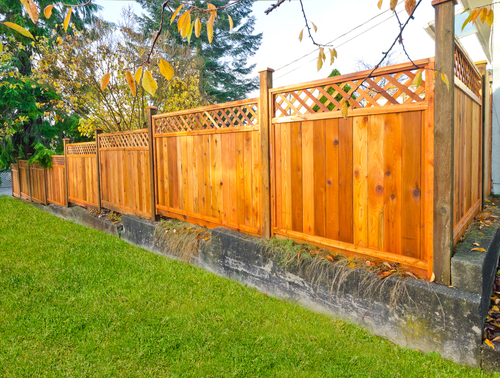 privacy fence fort